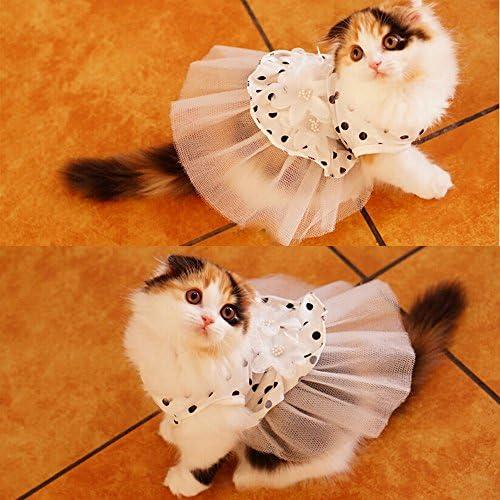 Cat dresses _image4