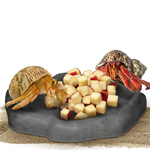 SunGrow Hermit Crab Feeding Bowl, 5.5 Inches, Keeps Crabitat Clear, Durable, Attractive, Multifunctional Decor, Serve as Climbing Toy or Drinking Bowl, Swimming Pool and More