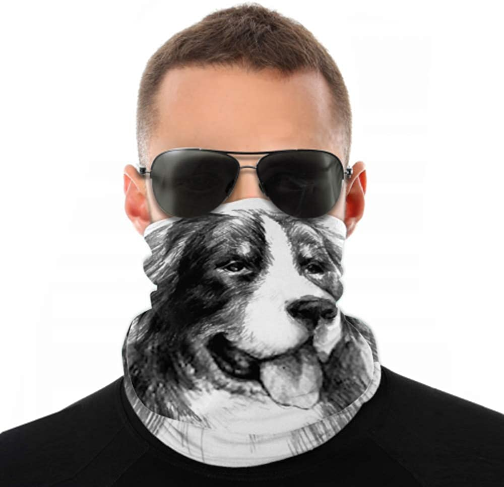 Headbands For Men Women Neck Gaiter, Face Mask, Headband, Scarf Bernese Mountain Dog Graphic Portrait Hand Turban Multi Scarf Double Sided Print Stretchy Headbands Women For Sport Outdoor