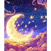 レームレス 40x50cm 油絵 数字 on Canvas for Adults Kids Room Decor 月の風景-16インチ x 20インチ ブ(diyの木製フレーム)