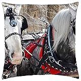 BXBX Throw Pillow Cover (18x18 Inch) - Caballos Castrado Invierno Equino Animal Nieve Naturaleza