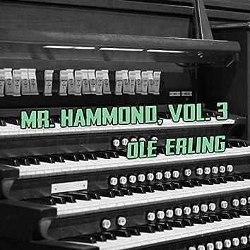 Mr. Hammond, Vol. 3