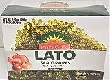 Puregold Lato Sea Grapes in Box - Ararosep