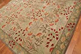 Persian Designs Alfombra de área de Lana Oriental Antigua Beige Tradicional nain Floral zieglar Oriental ((152x244) cm)