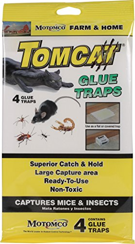 Motomco 198884 Tomcat Glue Traps for Mice & Insects, 4 Pack