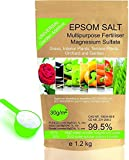 Solfato di Magnesio Fertilizzante Naturale 1.2 Kg. Uso Universale. Migliora la Crescita di Colture, Giardini, Piante da Appartamento ed Esterno CONSENTITO IN AGRICOLTURA BIOLOGICA