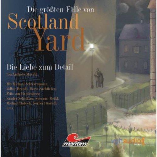 Die Liebe zum Detail audiobook cover art