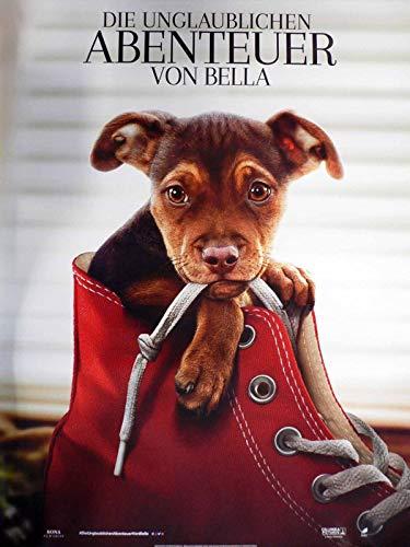 Die unglaublichen Abenteuer von Bella - Teaser - Filmposter A1 84x60cm gerollt