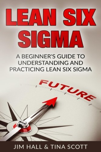 Lean Six Sigma:  Beginner's Guide to Understanding and Practicing Lean Six Sigma