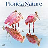 Florida Nature 2020 12 x 12 Inch Monthly Square Wall Calendar with Foil Stamped Cover, USA United States of America Southeast State Nature