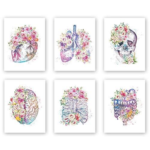Unframed Watercolor Flowers Wall Art Print,Human Organs Art Printing,Set of 6 Art Posters(8' x 10') Abstract Anatomy Viscera Pattern-Lung,Skull,Heart,Pelvis Art Canvas Paintingfor Living room Decor