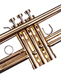 gold trim kit trumpet - Trumpet Trim Kit for all Benge Trumpet. for improving the sound. Custom made KGUBrass Trumpet caps (MEDIUM, Raw Brass)