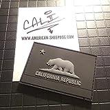 American Sheepdog California...image