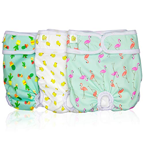 Pet Magasin Reusable Washable Dog Diaper
