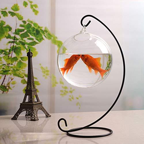 JIANGU Hangende Kleine Transparant Glas Vis Tank, Plant Vaas Klein Glas Aquarium - Zwart