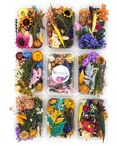 Kunstharz.Art Bunter Getrocknete Blumen Mix als Deko, zum Basteln, für Epoxidharz & Scrapbooking (1 Box)
