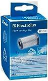 Electrolux 900195949 EF 75B Filtro Hepa per XXLBox 2, Ergoeasy, Energica, Dynamica