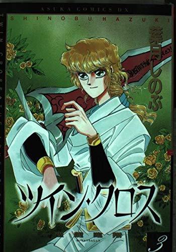 ツイン・クロス―聖竜臨翔 (3) (あすかコミックスDX)