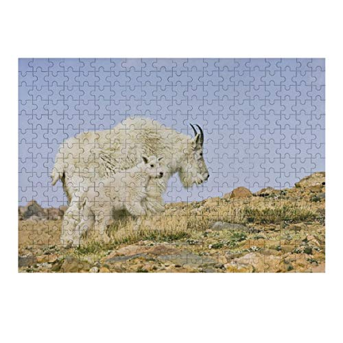 Jigsaw Puzzles 500 Pieces for Adults Large Piece Puzzle USA Colorado Rocky Mountains Mount Evans Fun Game Toys Birthday Gifts Fit Together Perfectly