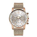 Damen Analog Quarz Armbanduhr mit Mesh-Armband,Modisch Armbanduhren Quarz Uhr Schöne Damenuhr Handuhrm,Geschenk zum Valentinstag (Weiß)