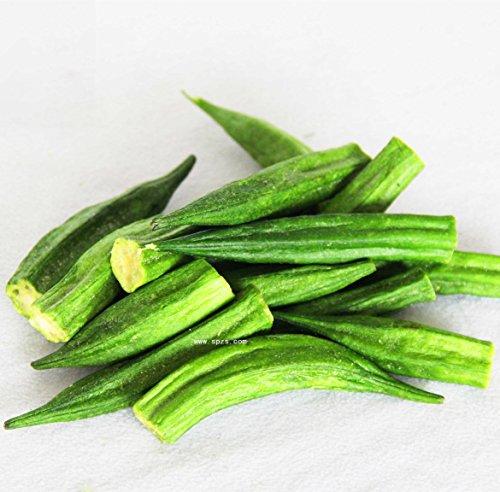 Vert Leaf®Okra 60+ non transgéniques cultivées semences exclusives.