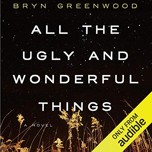 Page de couverture de All the Ugly and Wonderful Things