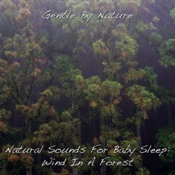 Natural Sounds For Baby Sleep: Wind In A Forest - Single