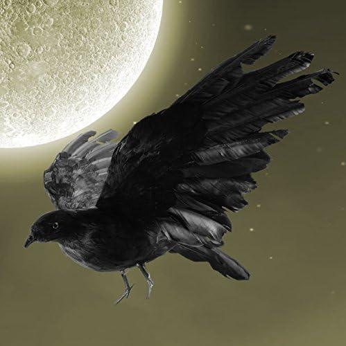 Max 50% OFF Cheap SALE Start IMOSA Realistic Crow Decoration Decoys Décor Hallow
