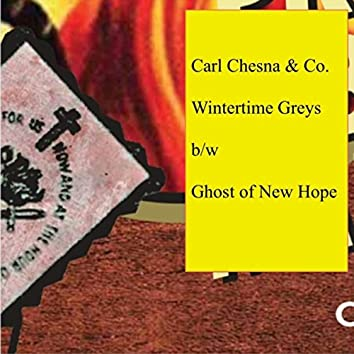 Wintertime Greys / Ghost of New Hope