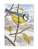 Caroline's Treasures ASA2051CHF Eurasian Blue Tits Bird Canvas House Size Flag, Multicolor, Large