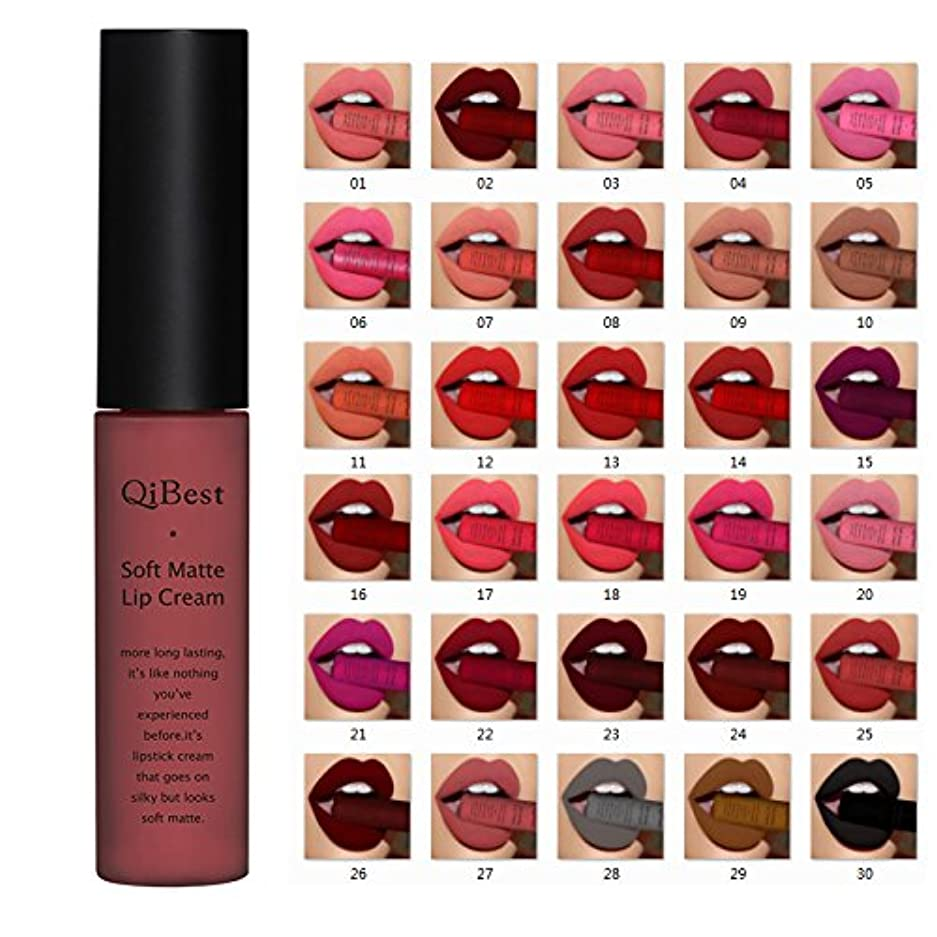 (04) Qibest Brand Lip Gloss Long Lasting Red Lips Matte Lipstick Liquid Lip Tint Cosmetic Nude Velvet Lipstick Matte Lip Makeup