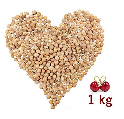 Eigenmarke Huesos de Cereza a Granel 1 kg