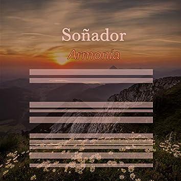 # 1 A 2019 Album: Soñador Armonía