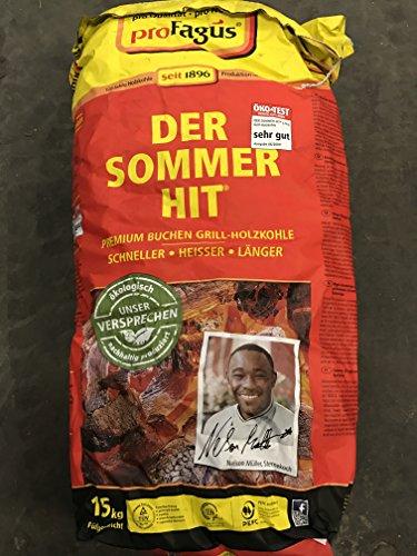 Profagus Holzkohle 15 Kg Sack Sommerhit