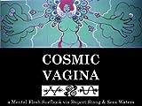 Cosmic Vagina (English Edition)
