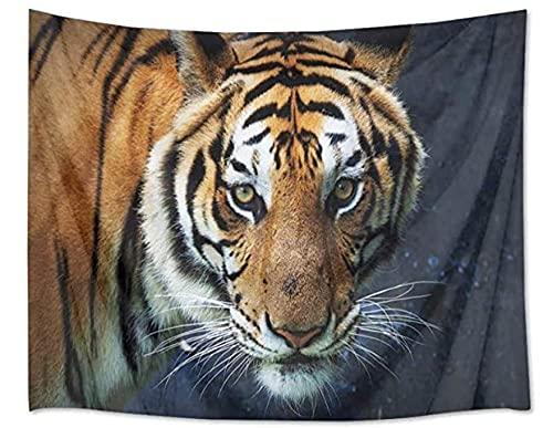 NC117 Tapiz de Tigre Gato decoración de Animales y Mirada dominante Tapiz Dormitorio Sala de Estar Dormitorio Mantel de Pared 60 × 40 Pulgadas