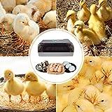 Kacsoo Incubatrice di Uova 9-35 uova Incubatrice per uova automatica Rotazione Automatica delle Uova e Controllo della Temperatura Incubatrice per polli,per Polli Anatre Oche