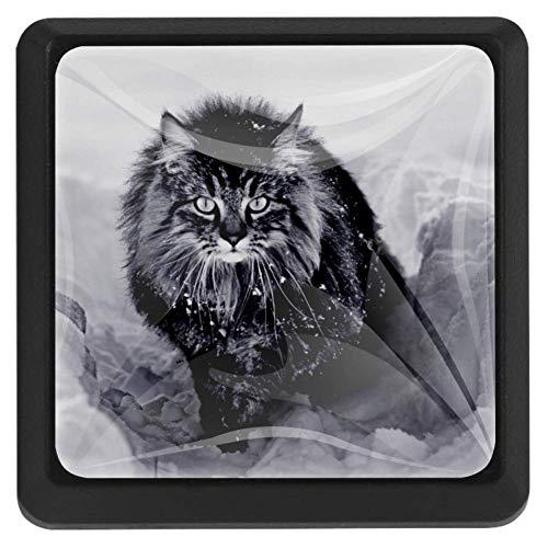 Cassetto tira maniglia con viti Un gatto norvegese della foresta nella neve per decorazioni domestiche Manopole Set regalo quadrato di 3