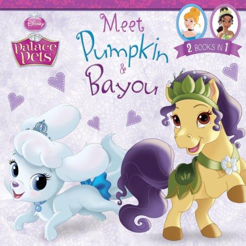 Palace Pets: Meet Pumpkin and Bayou: 2 Books in 1! (Disney Storybook (eBook))