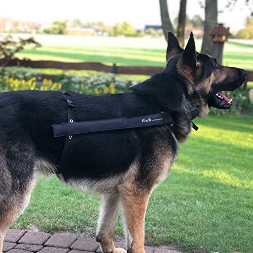 Kleck Leckschutz die Kragen/Krausen/Biss - Schutz Alternative für Hunde (L 40cm bis 55cm)