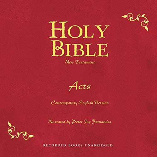 Holy Bible audiobook cover art