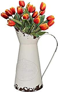 Yoillione French Pitcher Vase, Vintage Pitcher Vase, Metal Farmhouse Pitcher Vase, Decorative Jug Flower Pitcher for Vase Decor, White