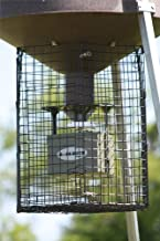 Boss Buck Varmint Cage, Black