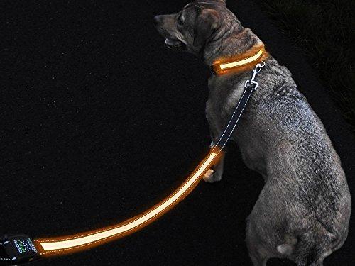 GlowHERO LED Light Up Dog Leash