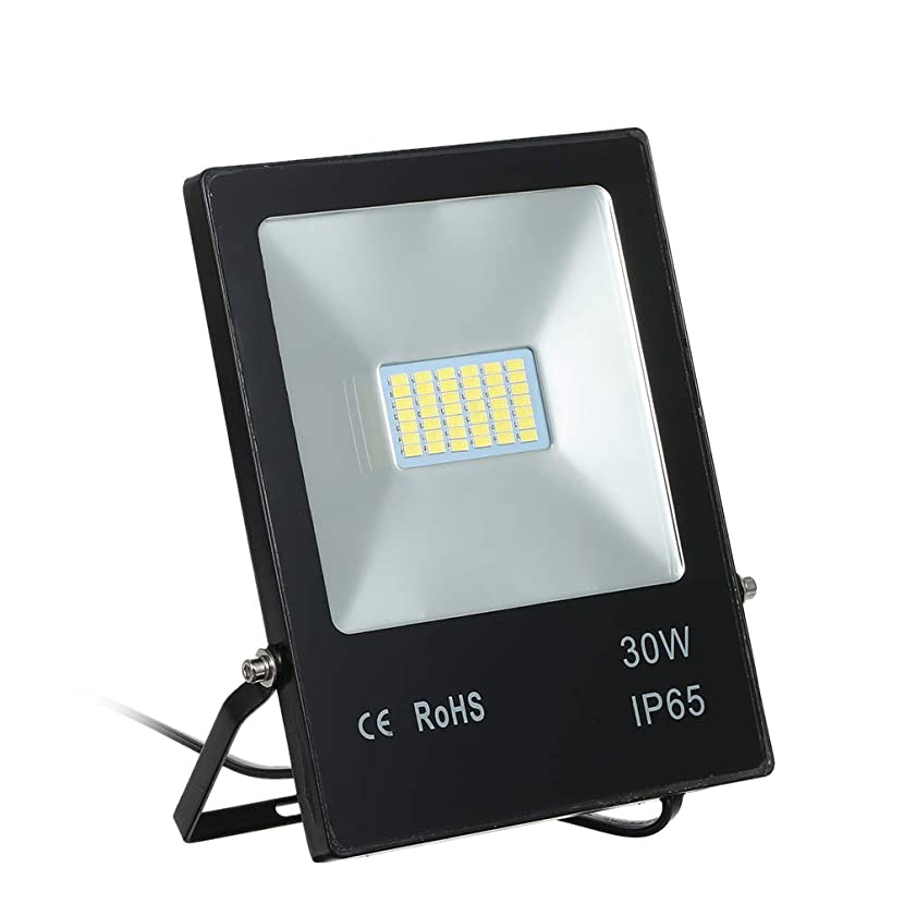 レンズ特派員盟主Galapara LED投光器 LED作業灯AC100-264V 30W 70LED 6000K 広角120度 防水IP68 加工 看板灯 野外灯 駐車場灯