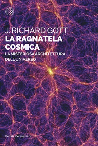 La ragnatela cosmica. La misteriosa architettura dell'universo
