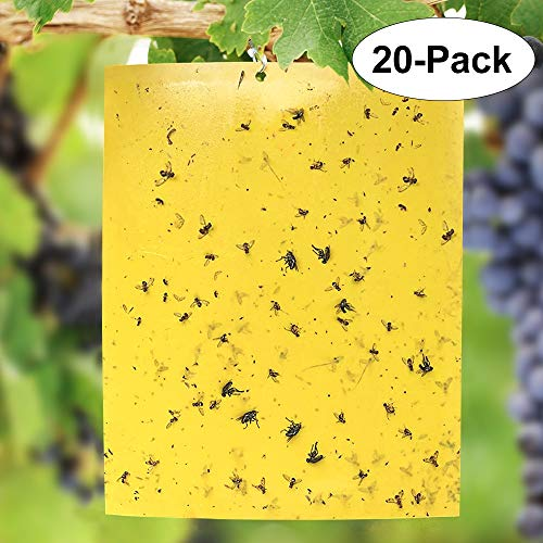 Negarly 20-Pack Dual-Sided Yellow Sticky...