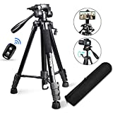 "Best Camera Tripods - Torjim 60"" Camera Tripod with Carry Bag, Lightweight Review"