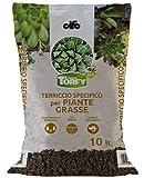 Terriccio per piante grasse e succulente Torfy BIO da 10 lt.