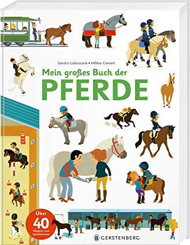 Mein großes Buch der Pferde: Über 40 Klappen und Spielelemente